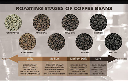 Roasting Stage of Coffee Bean